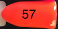 57. Baby Bell 'C Me Coming Orange'
